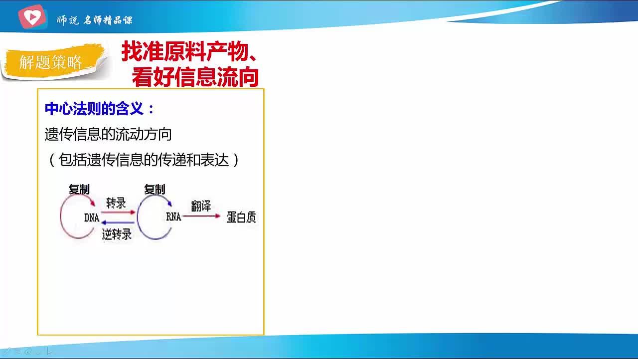 人教版 高三三輪生物 07 中心法則-視頻微課堂