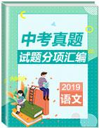 2019年中考真题语文试题分项汇编
