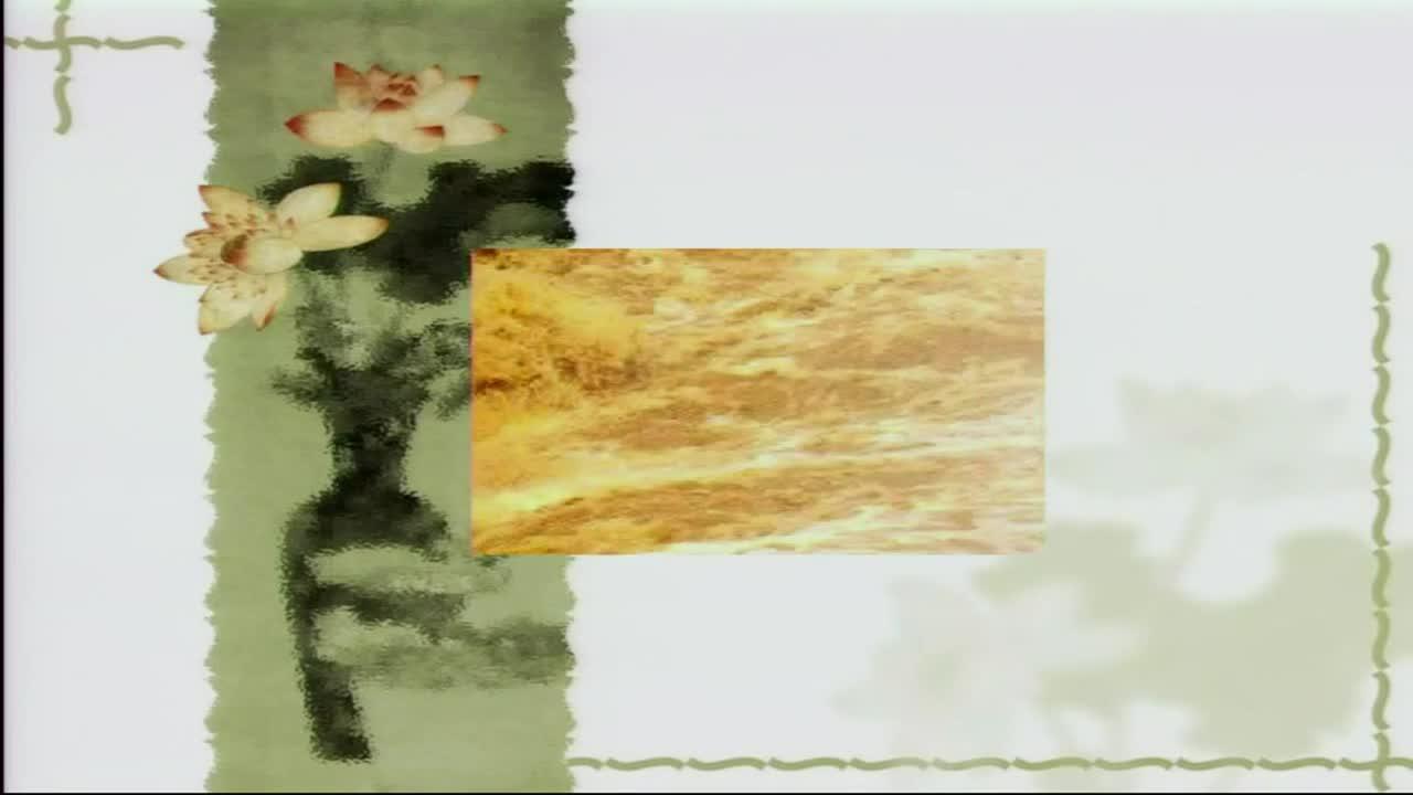 人教部编版 七年级下 语文 2.5黄河颂-视频公开课