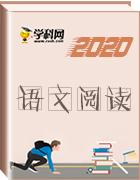 【备战中考】2020年中考语文阅读课件大全