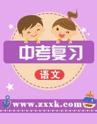 2020中考语文复习课件+知识通关