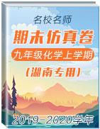 2019-2020學年名校名師九年級化學上學期期末仿真卷(湖南專用)