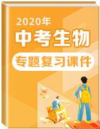 2020年中考生物专题复习课件