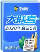 全国名校2020年高三5月学科网大联考考后强化卷