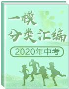 2020年中考一模分类汇编