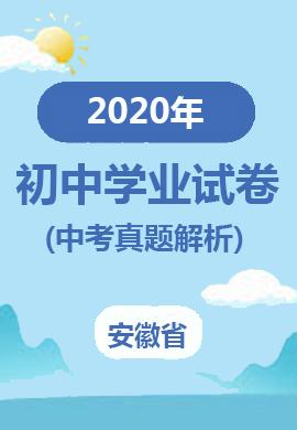 安徽省2020年初中学业水平考试(中考)试题