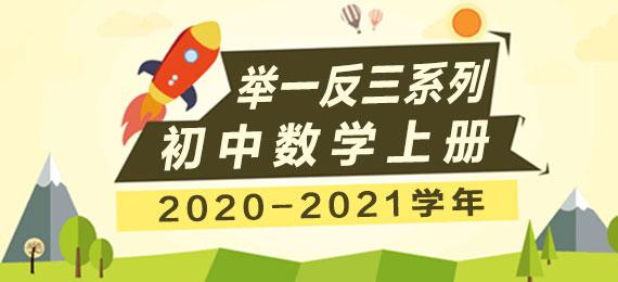 2020-2021学年初中数学上册举一反三系列(多版本)