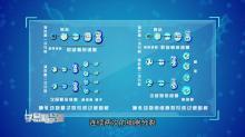 遗传的细胞基础 减数分裂 第四讲 精子、卵细胞形成过程的比较