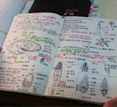 """女大学生四年积累15本""""绘本笔记"""""""