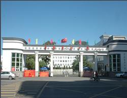 阜新实验中学
