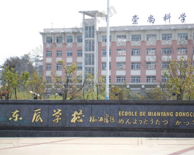 东辰国际学校