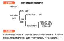2017 高考生物新课标卷Ⅱ(甲卷)生物试题