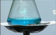 九年级化学:硫酸铜与铁-视频素材
