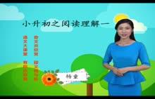 人教版 小升初語文 專題2 閱讀理解(一)-視頻微課堂