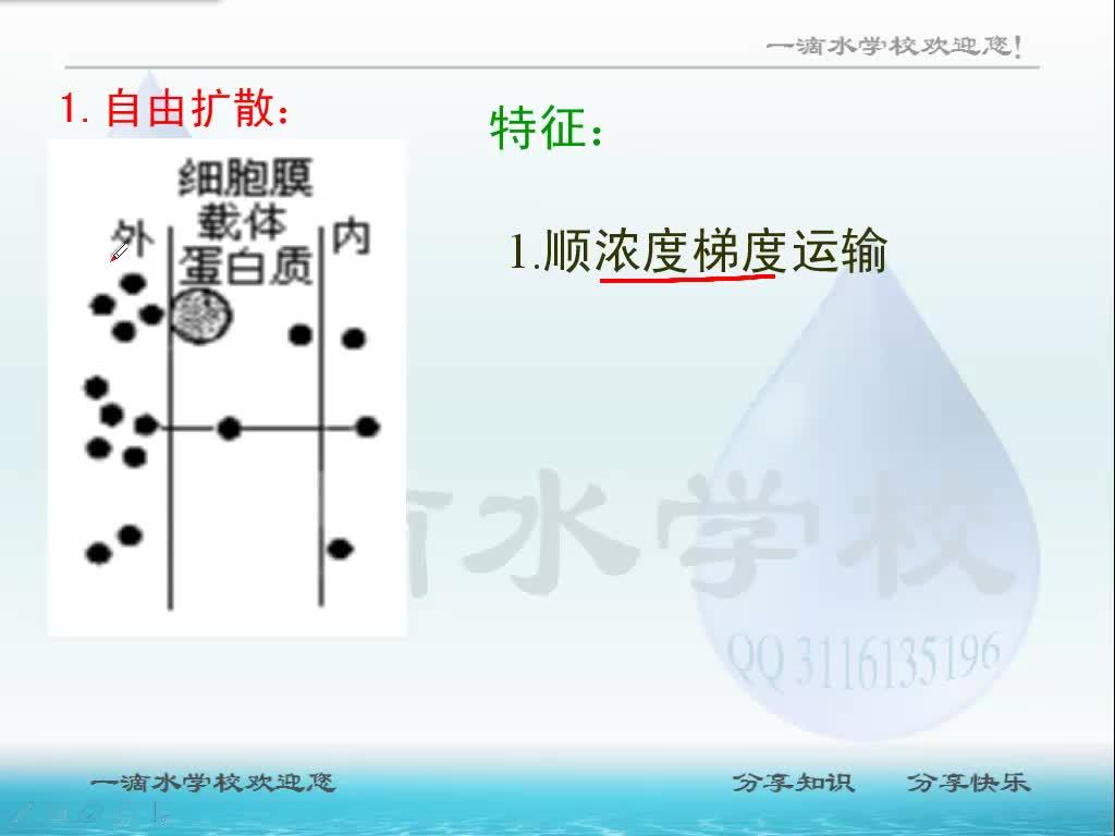 视频4.3 物质跨膜运输的方式-高中生物人教版必修1【一滴水】