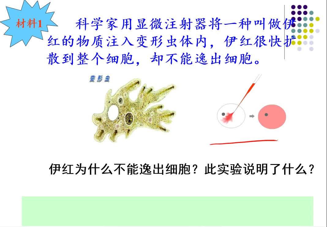 高中生物微课《细胞膜》NO9