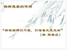 """高三語文 高考詩歌鑒賞專題復習  處處""""柳""""情-視頻微課堂"""