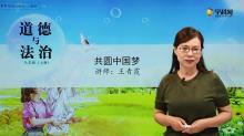 4.8.2 共圆中国梦-道德与法治九年级上册(部编版微课堂)