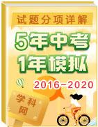 5年(2016-2020)中考1年模拟試題分項詳解