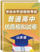 2021年山东省普通高中学业水平合格性考试仿真模拟卷