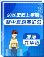 湖南省各地区2021届九年级上学期期中考试真题卷汇总