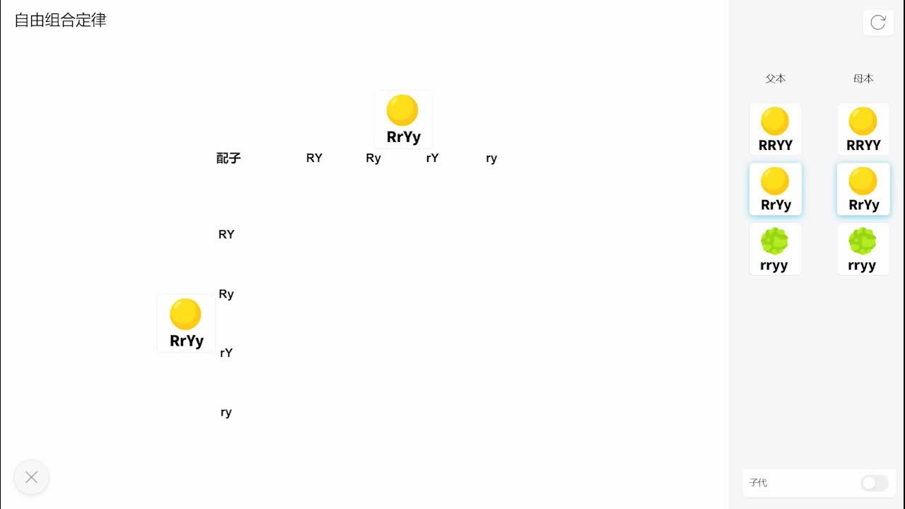 1.2自由组合定律-【火花学院】人教版必修二高一生物 孟德尔的豌豆杂交实验 第一章 遗传因子的发现 第一节 孟德尔的豌豆杂交实验(二) [来自e网通客户端]