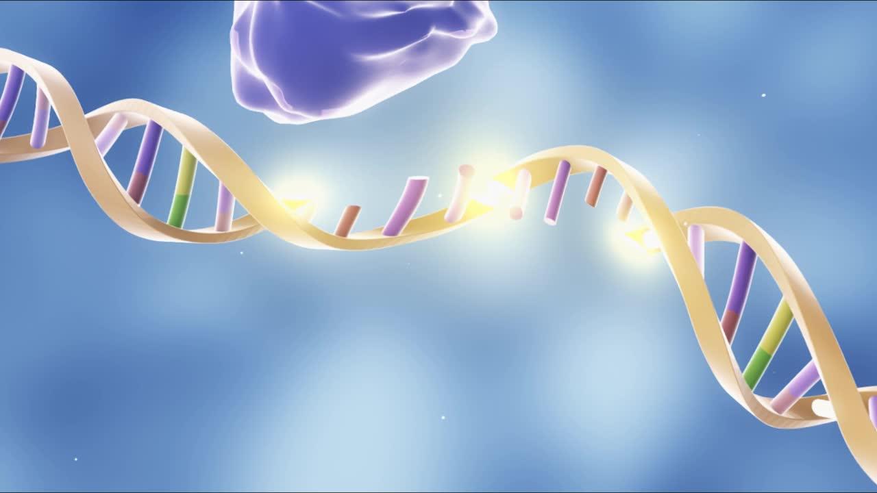 6.2 基因工程 视频-【火花学院】人教版必修二高一生物