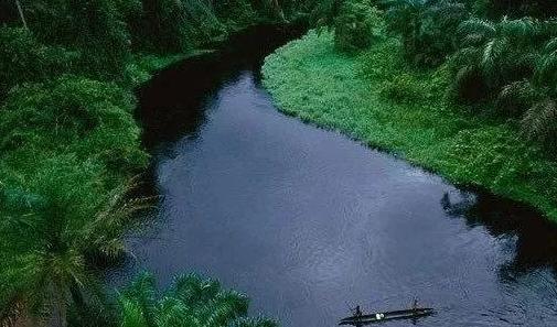 世界最长河流前十排行榜