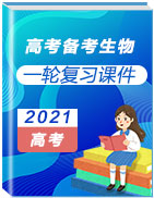 2021年高考备考生物一轮复习课件