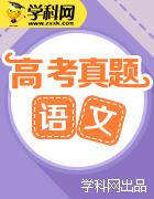 【真題解析】2019年高考語文試題解析(精編版)