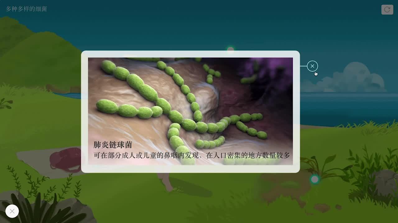 【限时免费】5.4.2 多种多样的细菌-【火花学院】人教版八年级生物上册 微生物类群 第五单元 生物圈中的其他生物 第四章 细菌和真菌 第二节 细菌 [来自e网通客户端]