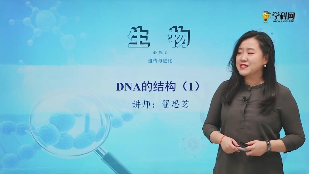 3.2 DNA的结构(1)-高中生物必修2(新教材同步)