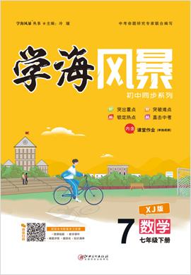 【学海风暴】2020-2021学年七年级下册初一数学(湘教版)