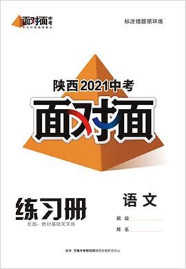 2021陕西语文中考面对面精练本