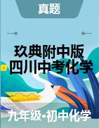 【玖典附中版】2020年四川省中考化学真题详解