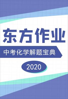 2020【东方作业】中考化学解题宝典