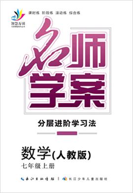 2019-2020学年七年级上册初一数学【名师学案】(人教版)