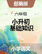 2021年小升初语文基础知识讲练