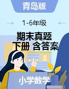 【真题】山东省潍坊市寿光市数学1-6年级下学期期末试题 2019-2020学年(青岛版,含答案,PDF)
