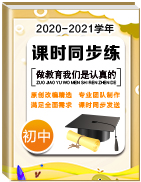 2020-2021學年初中課時同步練