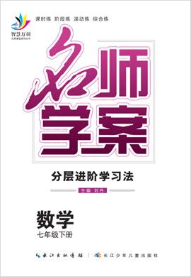 2019-2020学年七年级下册初一数学【名师学案】(人教版)