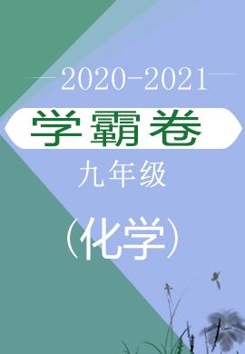 2020-2021学年人教九年级化学上册(学霸卷)