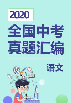 2020年最新全国中考语文真题分类专题汇编【通用版】