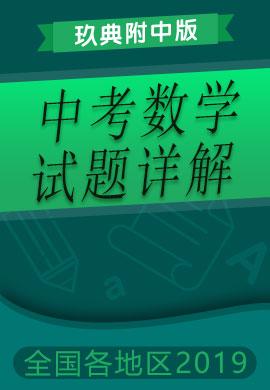 【玖典附中版】2019年湖北省各地市中考数学试题详解