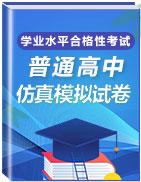 2020-2021学年高中学业水平合格性考试仿真模拟卷