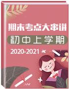 2020-2021學年初中上學期期末考點大串講