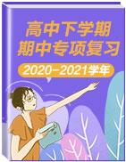 2020-2021学年高中下学期期中专项复习