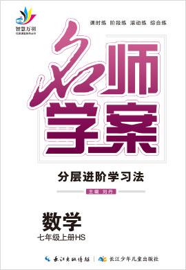 2020-2021学年七年级上册初一数学【名师学案】(华师版)
