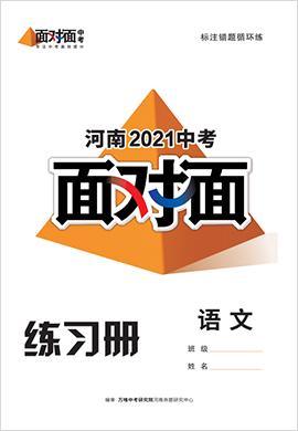2021河南语文中考面对面精练本
