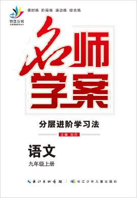 2020-2021学年九年级全一册初三语文【名师学案】(部编版)河南